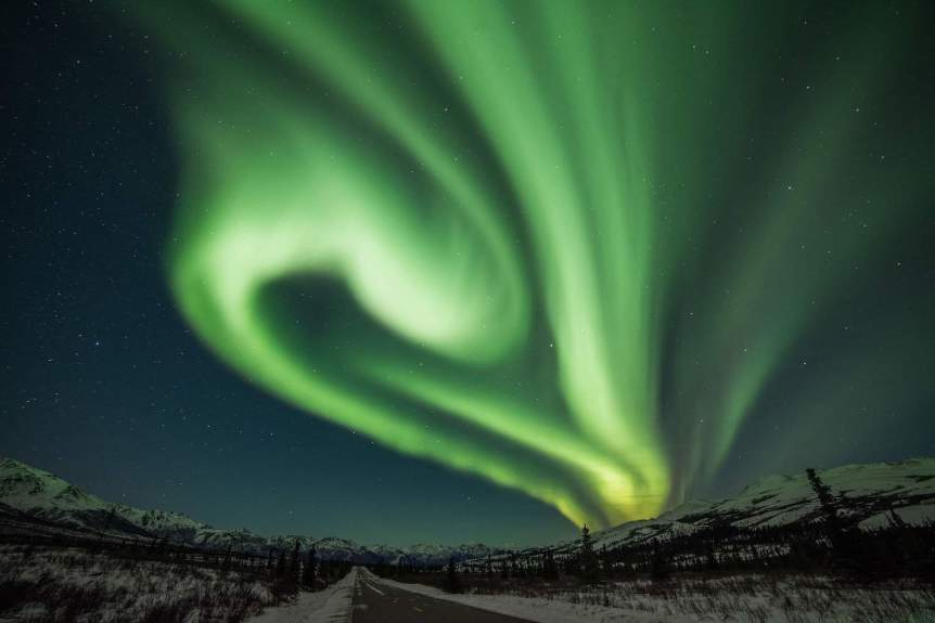 Northern Lights in Alaska - Denali National Park