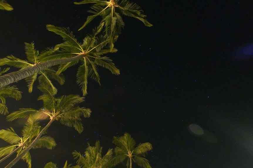 Stargazing in Hawaii Hero