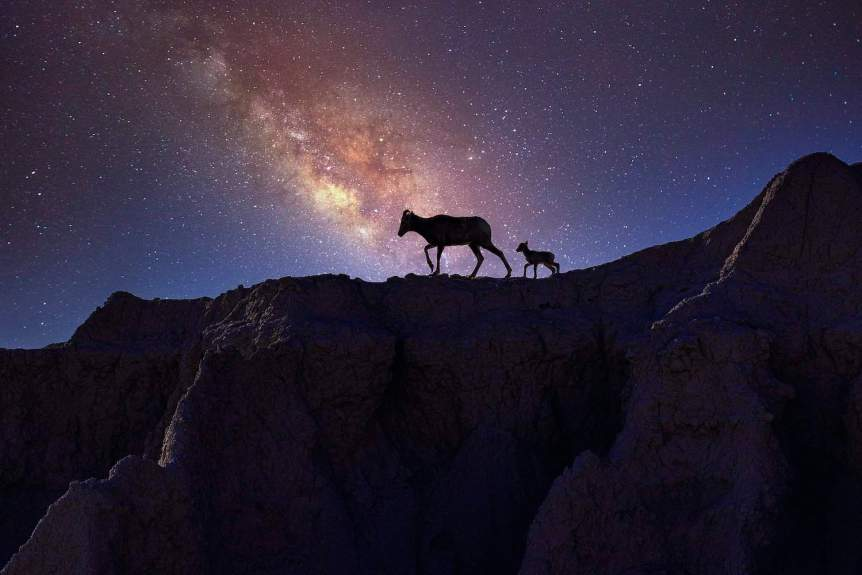 Best National Parks for Stargazing - Badlands - Janusz Sobolewski via Flickr