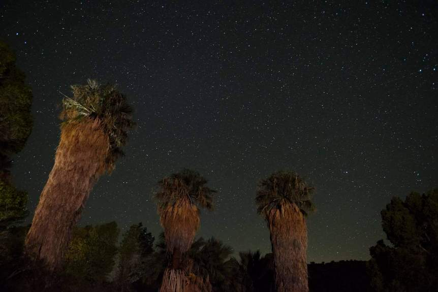 Palm Springs Stargazing - Hannah Schwalbe for NPS