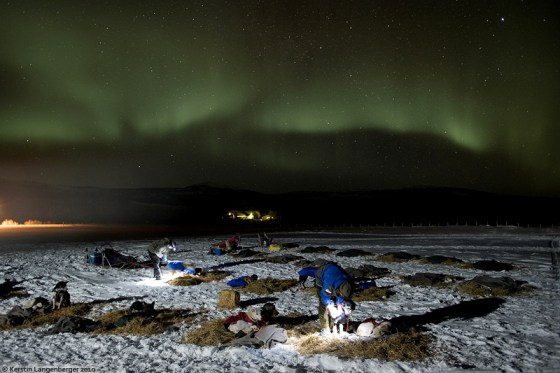 Every night auroras could be seen during Norways Finnmarksløpet race.