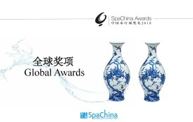 2018 全球奖项 Global Awards