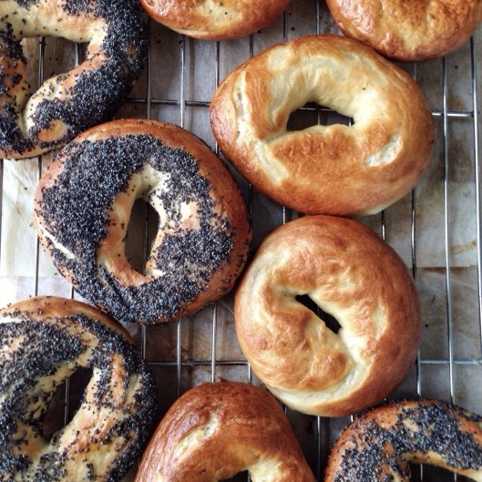 plain and poppy seed bagels