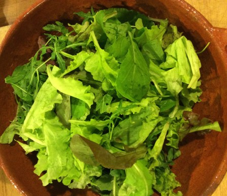 Salad pickings from the garden