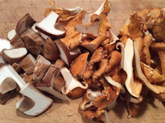 Mushrooms - porcini and chanterelles