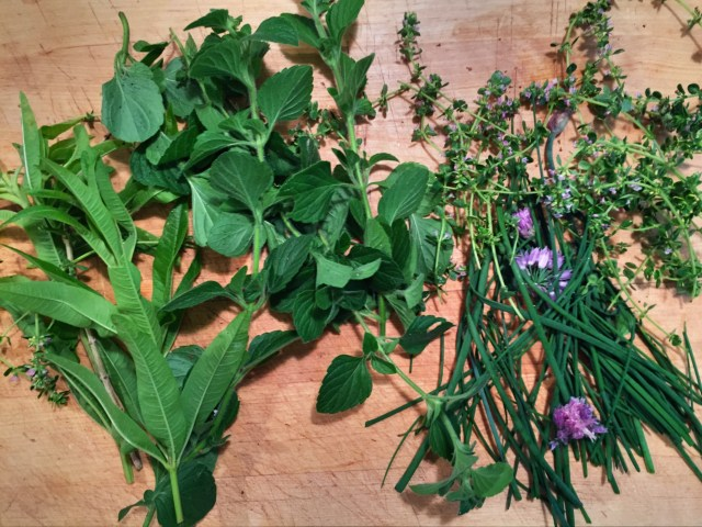 Herbs for lemon verbena pesto