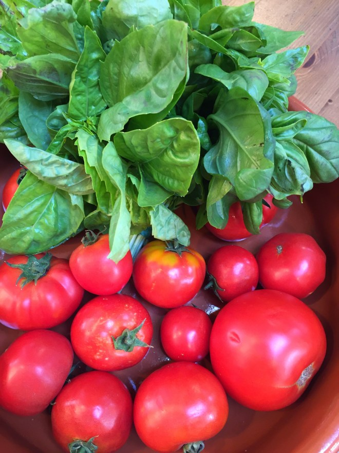 Vine ripened tomatoes and basil