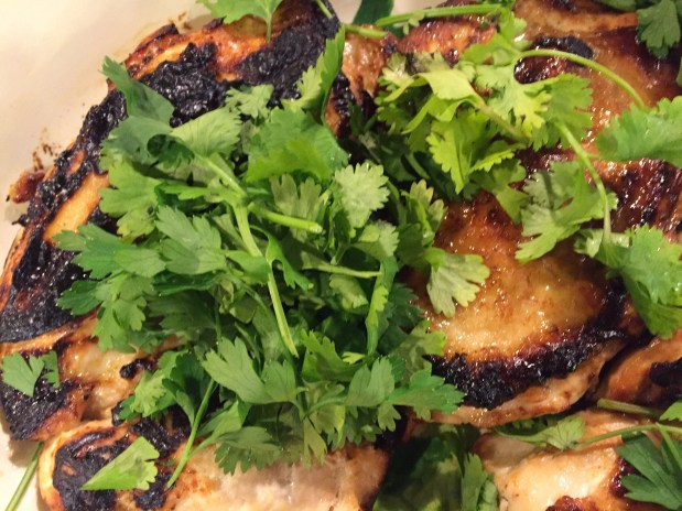 September – Chili Lime Marinade for Chicken or Pork