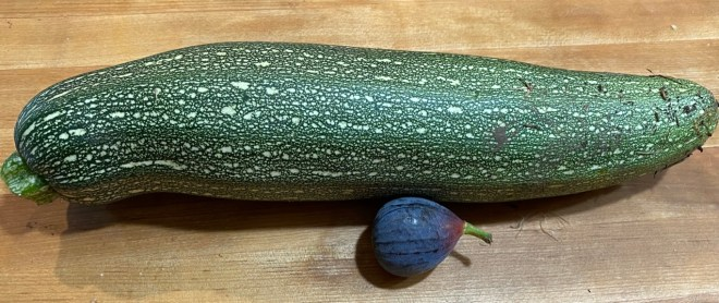 baseball bat sized zucchini