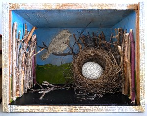 assemblage box with nest