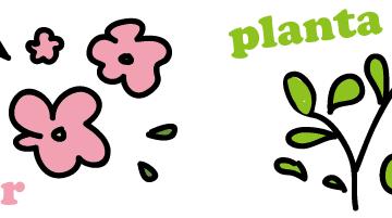 スペイン語で花と植物