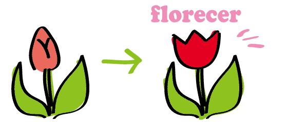 スペイン語 花が咲く