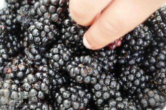 Blackberries makingalife.me 3