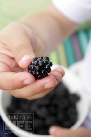 Blackberries makingalife.me 5