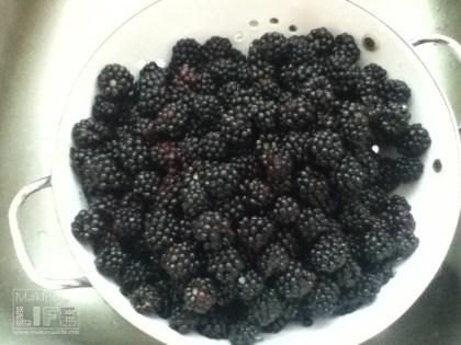 blackberries makingalife.me 8