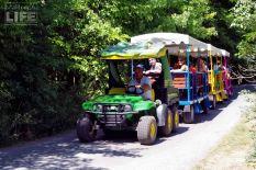 Gator Express Tram Safari Niagara