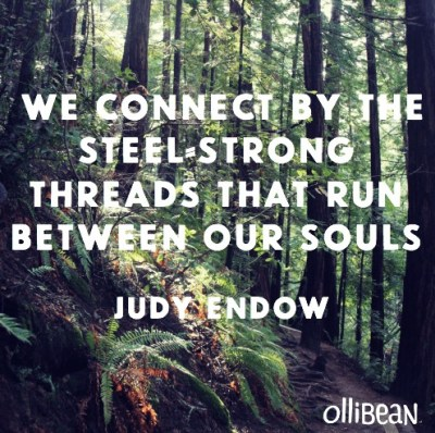 "Image of a forest with the text: ""We connect by the steel=strong threads that run between our souls."" By Judy Endow."