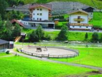 Algunos hoteles y caballos con los que enseñan a los niños a montar