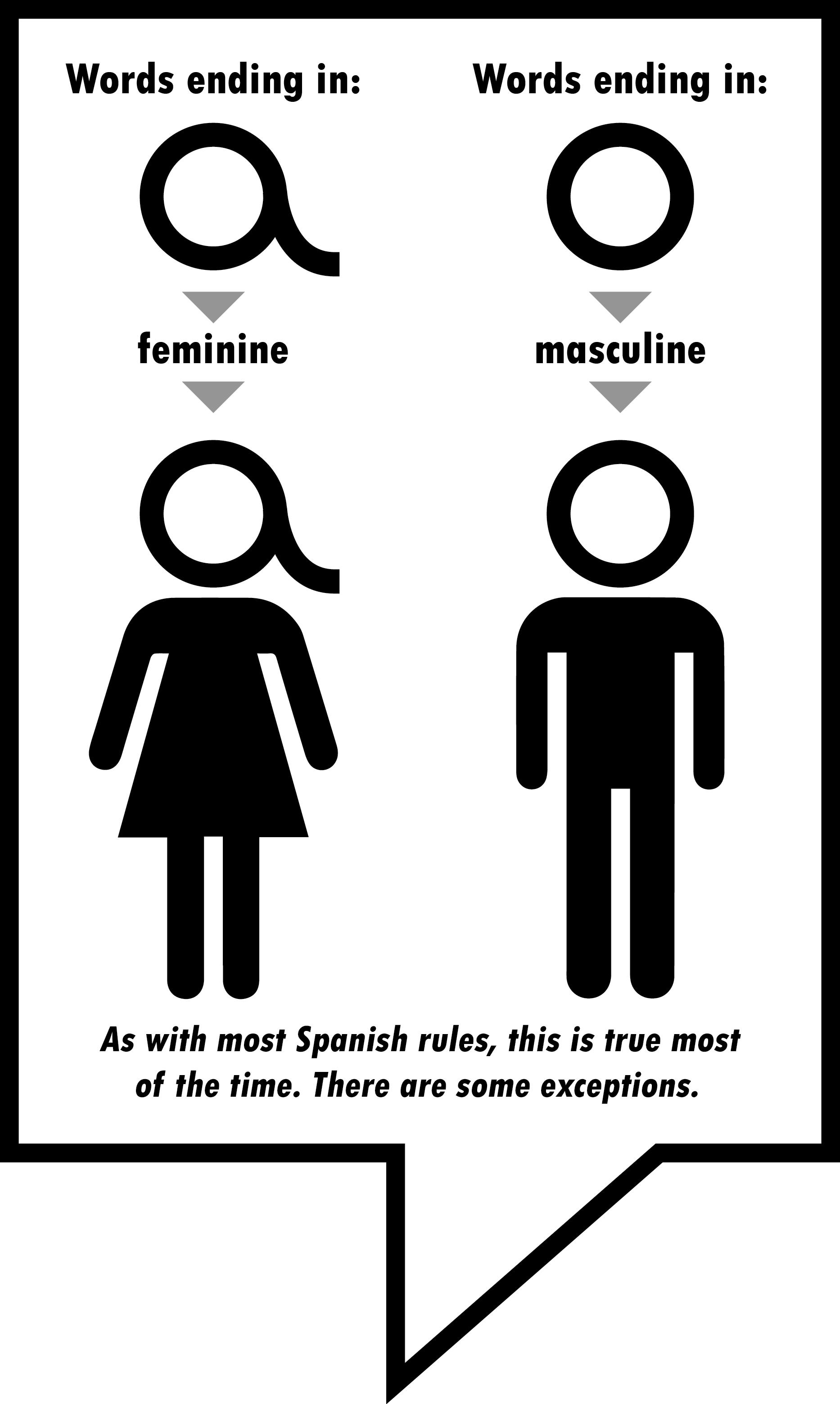 Spanish Masculine And Feminine