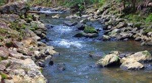 spanish-creek-belize-photo-3