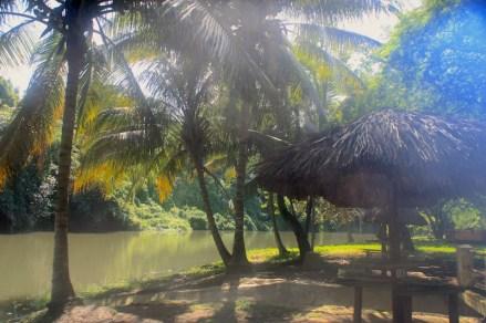 Almendares River_Havana_Cuba