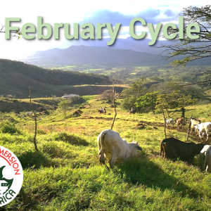 February Beginner Group