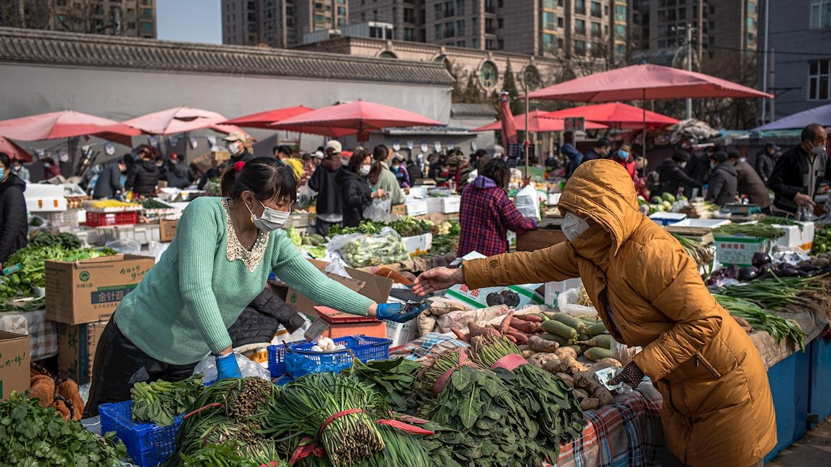 Diario chino sugiere que el covid-19 se introdujo a través de carne importada