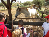 Farm excursion