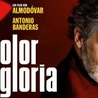 Wil jij ook naar de Spaanse film Dolor y Gloria?
