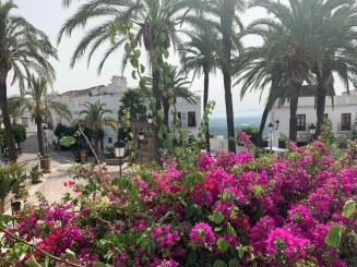 Aan de wandel in Vejer de la Frontera (4)