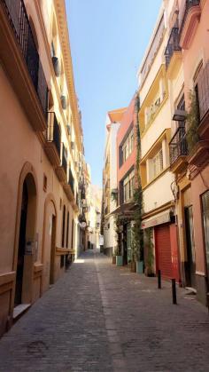 Wonen en studeren in Sevilla-7