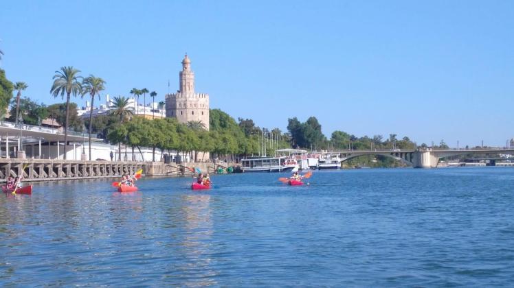 Wonen en studeren in Sevilla-8