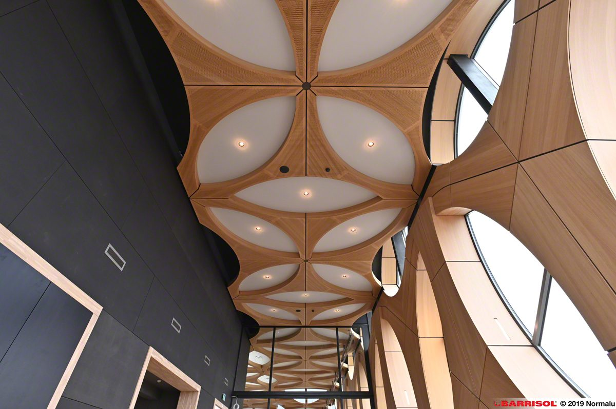 Naturalis Leiden spanplafond in het dak