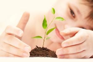 Ein Versicherungsmakler ist wie ein Gärtner, er kümmert sich um die Versicherung seiner Kunden mit der Liebe zum Detail.