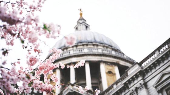Sparfüchsin unterwegs in London und Umgebung