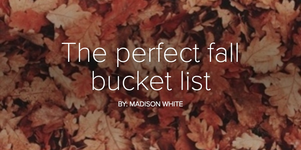 The perfect fall bucket list