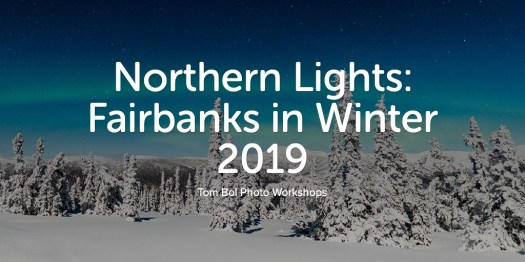 Northern Lights: Fairbanks in Winter 2019