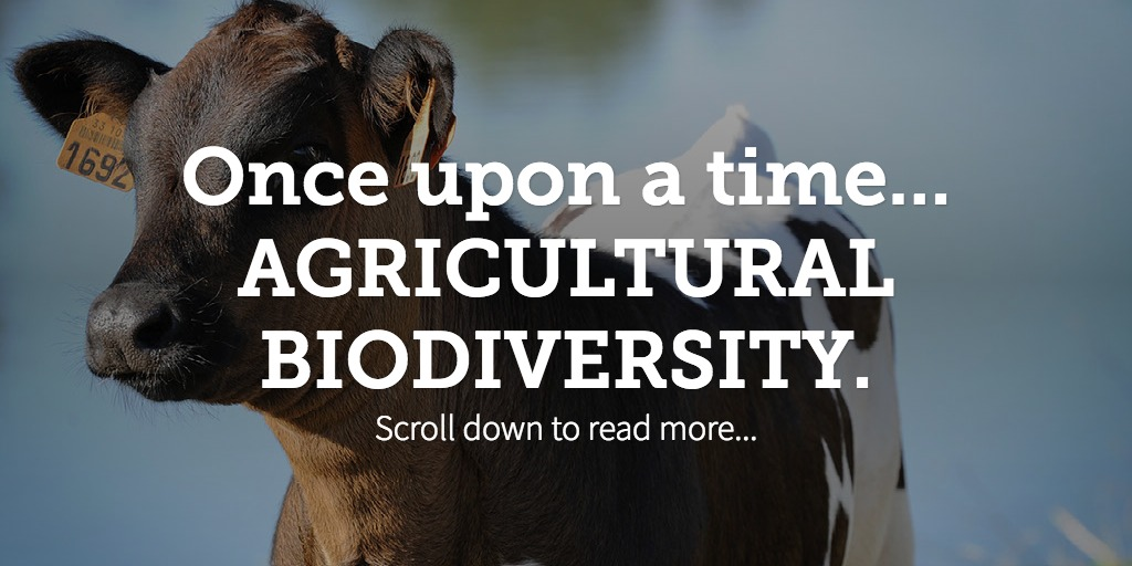 Once upon a time... AGRICULTURAL BIODIVERSITY.