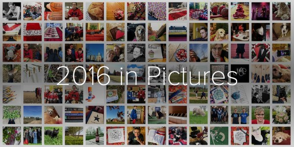 2016 in Pictures