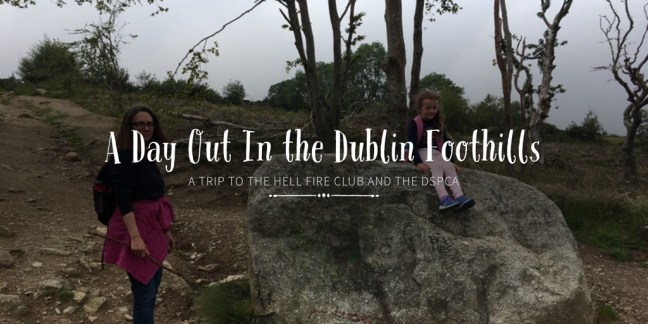 A Day Out In the Dublin Foothills