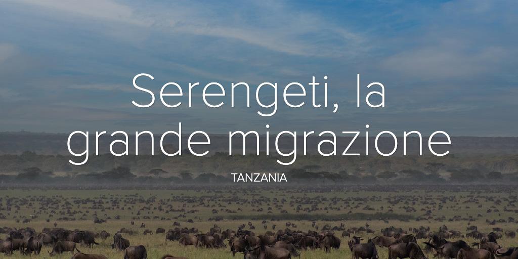 Serengeti, la grande migrazione