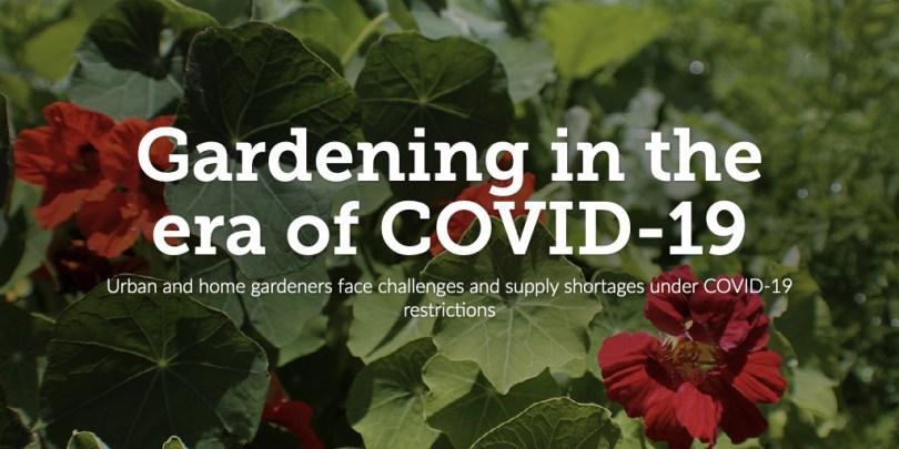 Gardening in the era of Covid-19