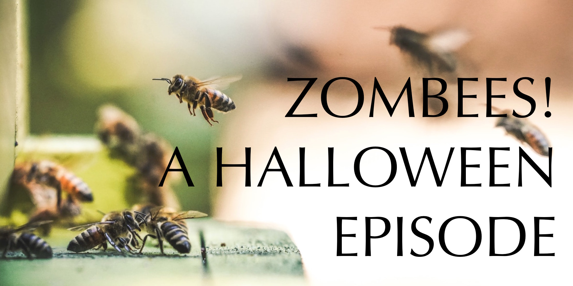 ZOMBEES! A Halloween Episode