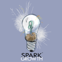 Spark Growth, LLC