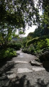 Niagara path