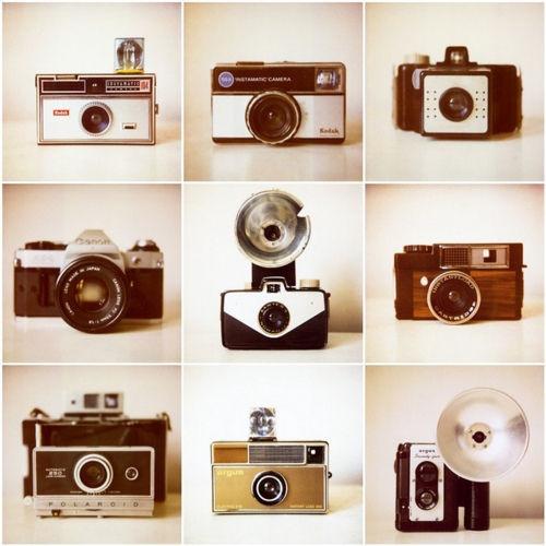 Camera, Camera, Camera