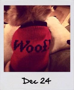 Polaroid | Dec 24