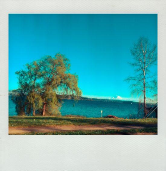 polaroid_03-17