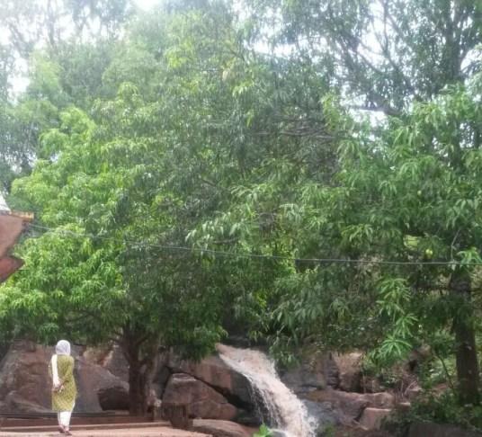 Chattikona water fall in summer