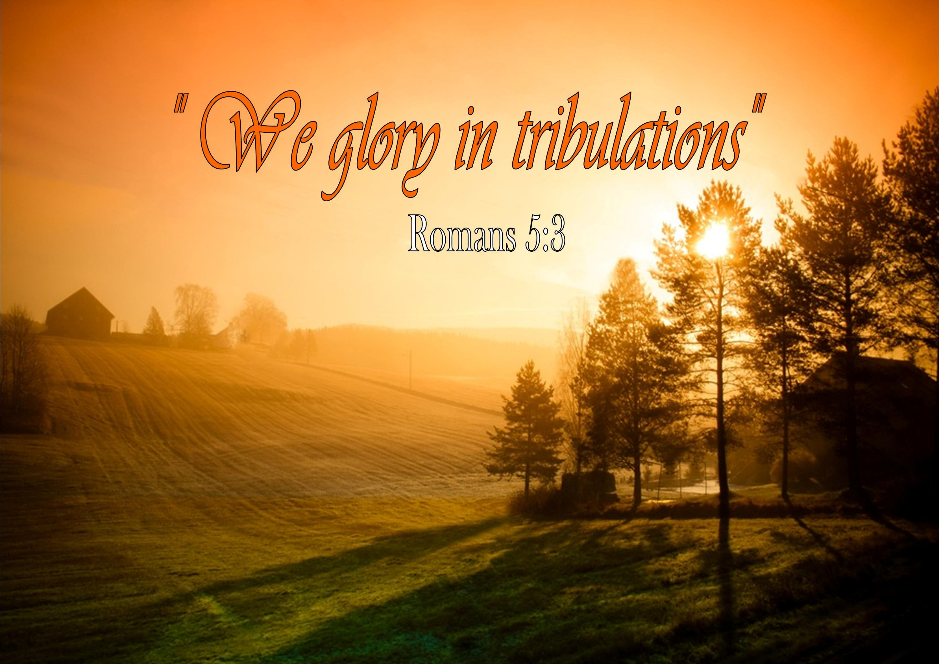 Through It All We Learn To Trust In Jesus Sb Salt And